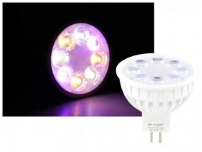 Mi-Light Smart LED GU5.3 MR16 4W RGB+CCT FUT104 Leuchtmittel